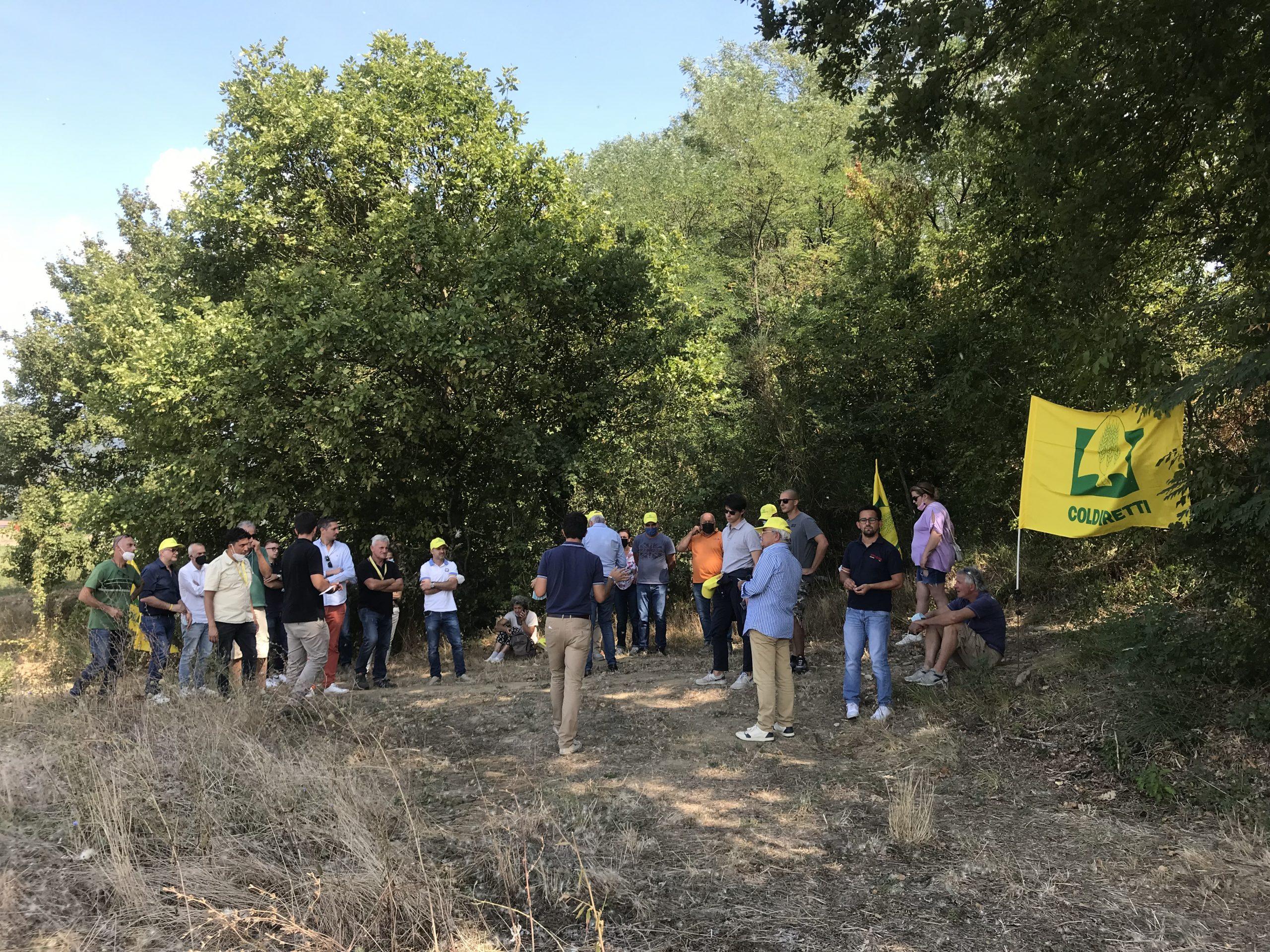 Gli imprenditori agricoli in visita ai campi di cardo